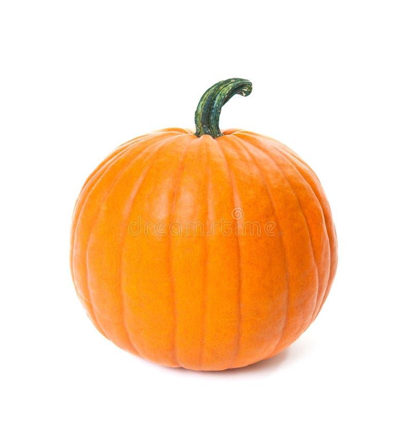 Download Pumpkin stock image. Image of object, orange, nobody - 26489961