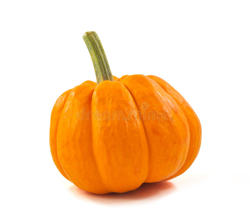 Download Pumpkin stock photo. Image of meal, field, ground, agriculture - 26549868