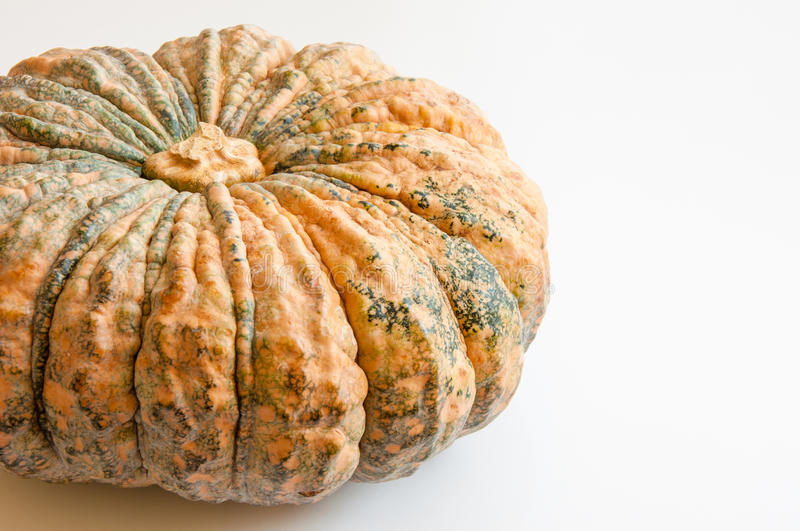Download Pumpkin Stock Photography - Image: 26655352