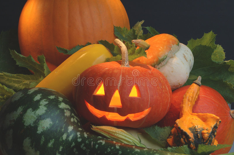Download Pumpkin stock photo. Image of maple, season, vegetable - 323384