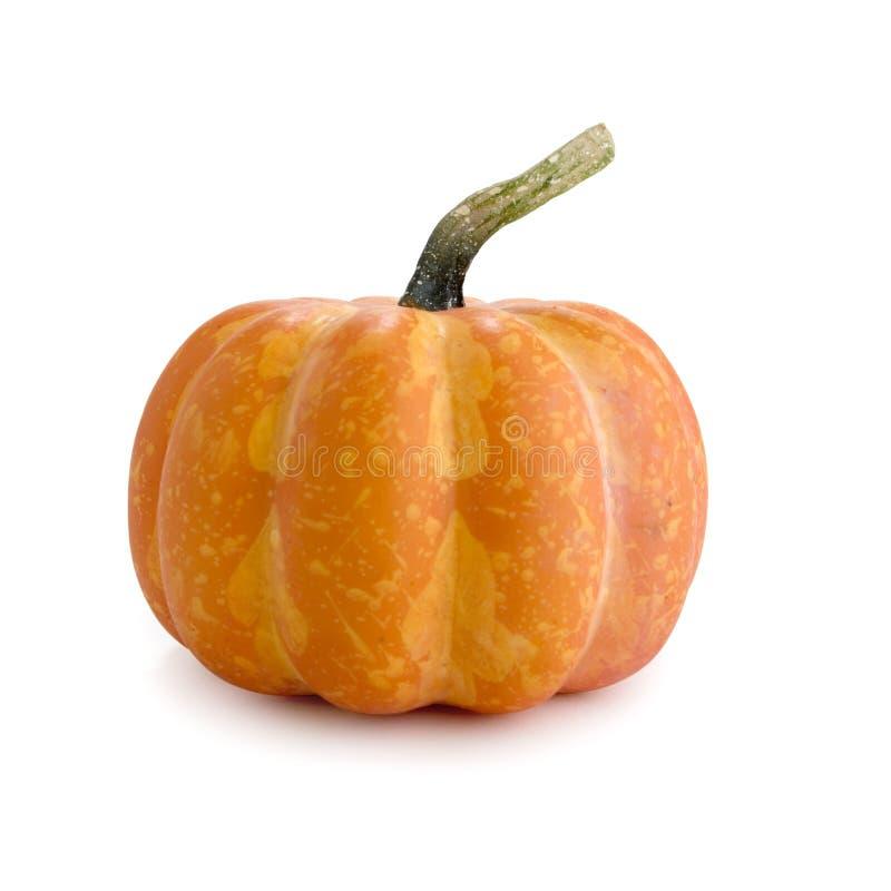 Free Pumpkin Royalty Free Stock Image - 382856