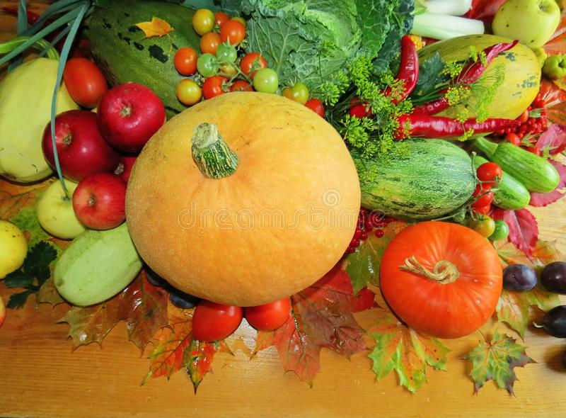 Pumpkin and another vegetables stock photos