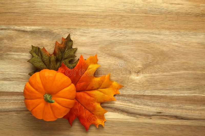 Download Pumpkin And Autumn Leaves Stock Photo - Image: 100815609