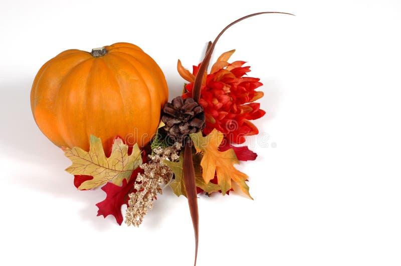 Pumpkin in autumn setting stock photos