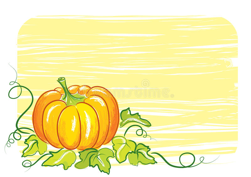 Pumpkin background stock photography