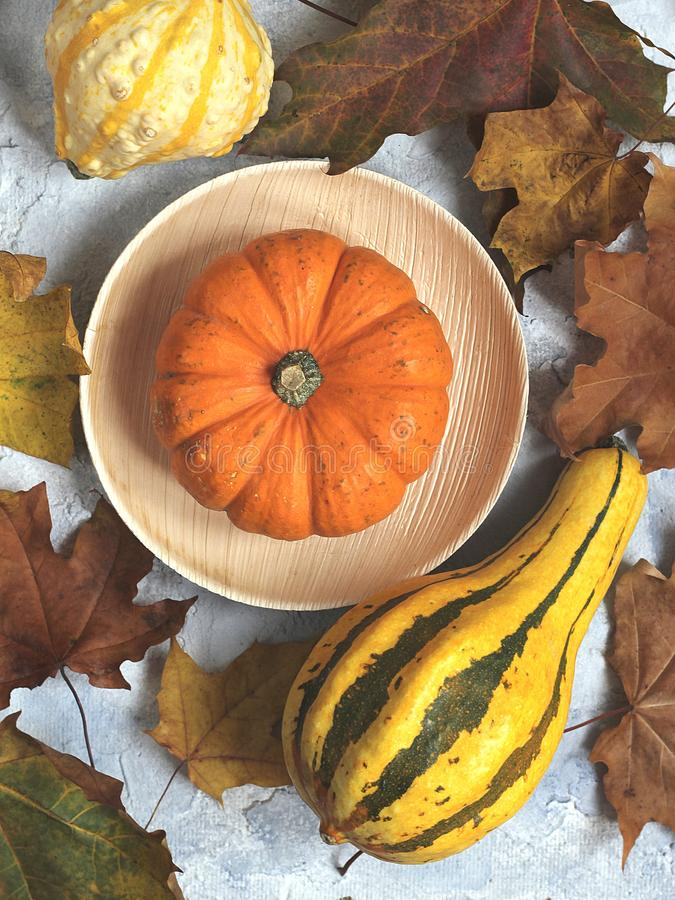 Pumpkin in a bamboo bowl surrounded by dry autumn leaves and yellow pumpkin stock image