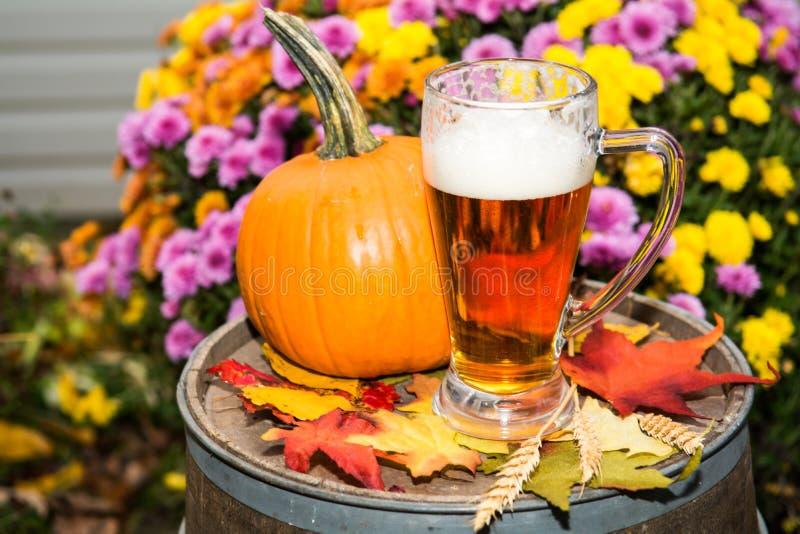 Pumpkin Beer. Seasonal Pumpkin Beer served outdoors stock image