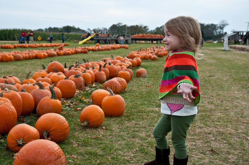 Download Pumpkin Bliss stock photo. Image of subject, girl, boots - 16643572