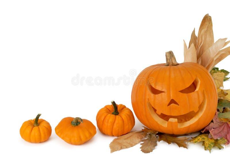 Pumpkin border royalty free stock photo