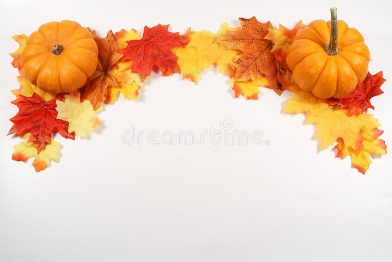 Pumpkin border royalty free stock images