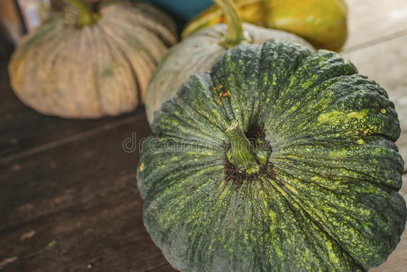 Pumpkin is a broccoli stock photos