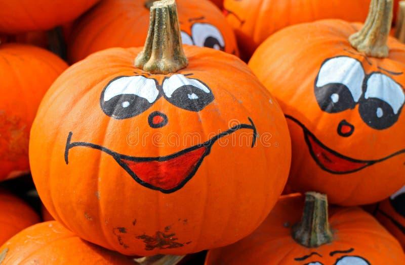 Pumpkin, Calabaza, Cucurbita, Winter Squash royalty free stock image