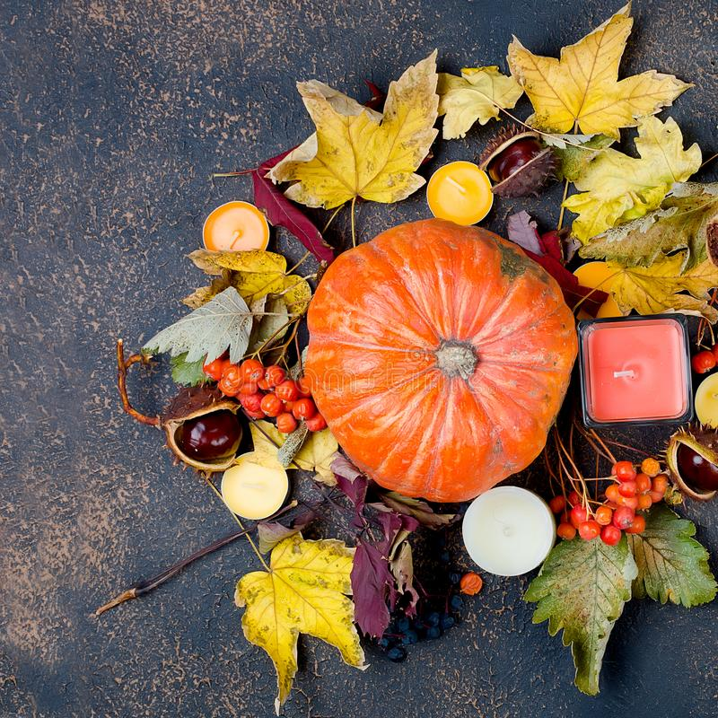 Autumn leaves, pumpkin, chestnuts, candles on a dark background. Pumpkin, candle, chestnut in the shell,  in a glass and autumnal fallen maple leaves on the dark stock images