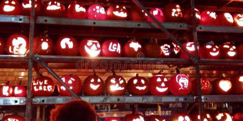 Pumpkin carving festival autumn stock photo