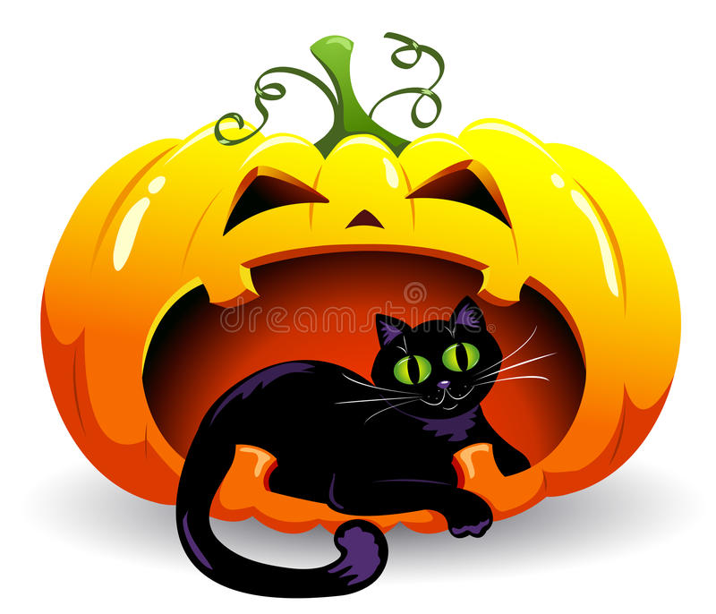 Download Pumpkin and cat. stock vector. Image of black, gourds - 20983096