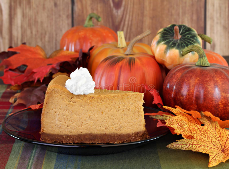 Pumpkin cheesecake in autumn setting royalty free stock images