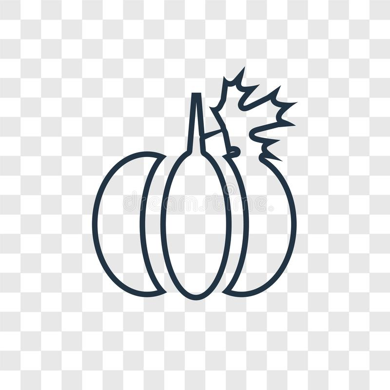 Pumpkin concept vector linear icon isolated on transparent background, Pumpkin concept transparency logo in outline style vector illustration