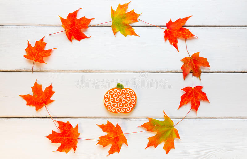 Pumpkin cookie on white wooden background in circle frame of autumn maple leaves. stock photos
