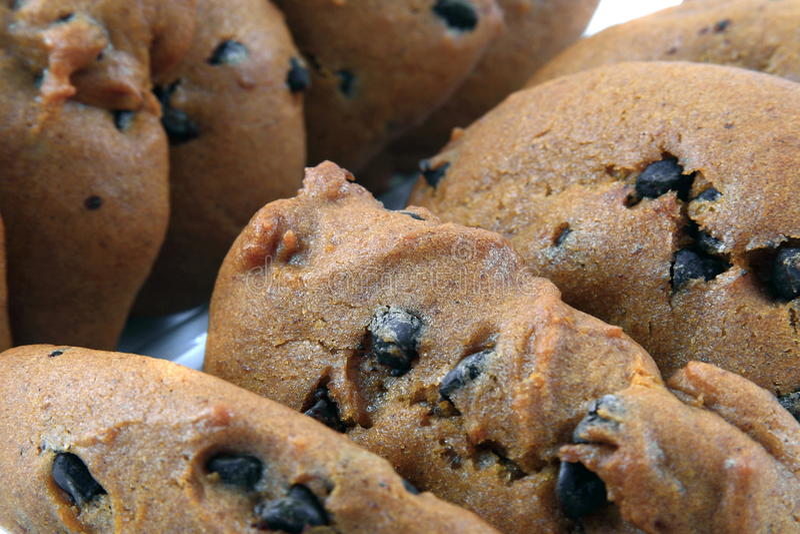Download Pumpkin Cookies stock image. Image of cookies, fall, seasonal - 15965433