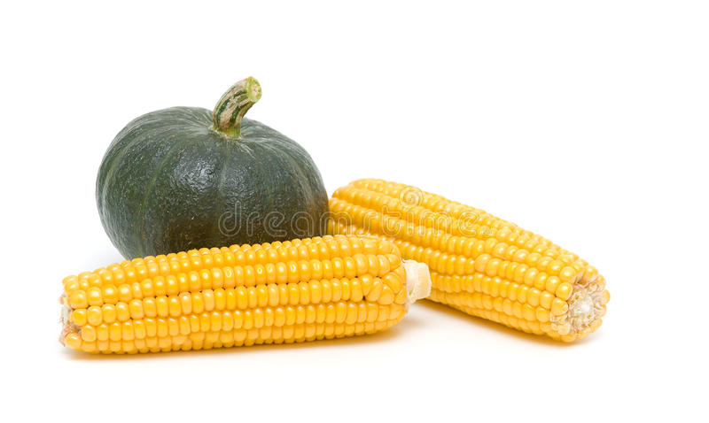 Pumpkin and corn close-up. white background - horizontal photo. Ripe pumpkin and corn on the cob close up on a white background. horizontal photo stock images