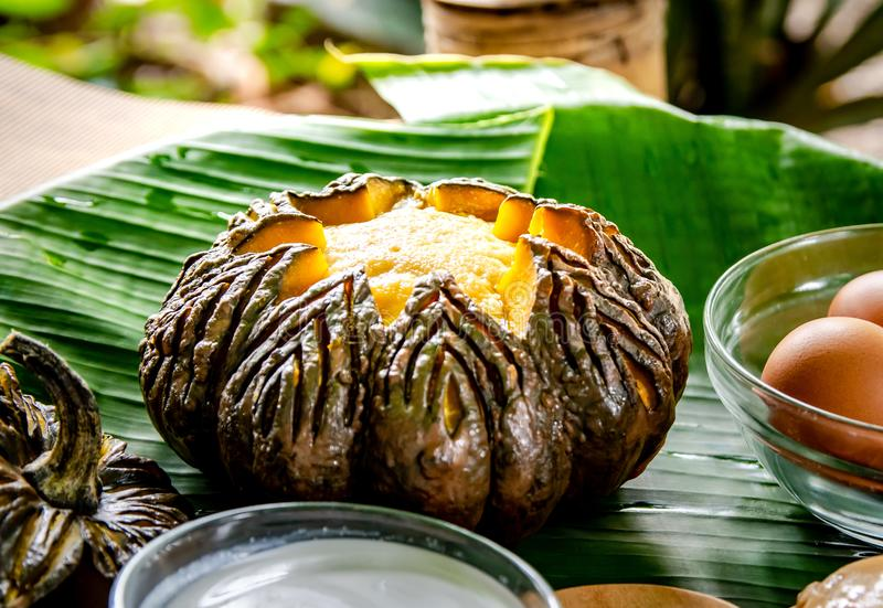 Pumpkin custard in pumpkin fruit cooking with hot steaming, Thai dessert menu served on the table in the garden at home. royalty free stock image