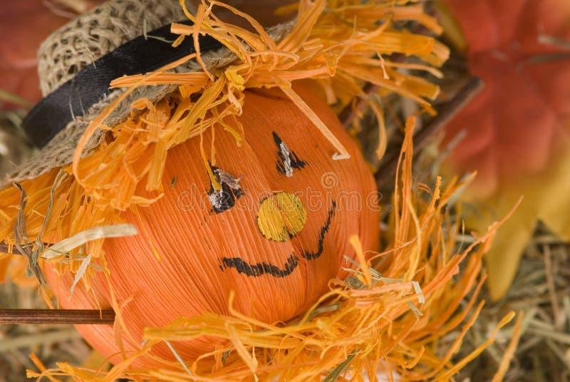 Download Pumpkin doll stock image. Image of farm, smiling, decorative - 3138195