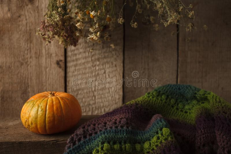 Pumpkin, dry flowers and woolen scarf on wooden background, Thanksgiving, coutryside And Fall Background.  stock photography