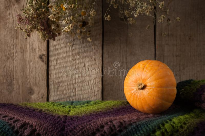 Pumpkin, dry flowers and woolen scarf on wooden background, Thanksgiving, coutryside And Fall Background, copy space. Pumpkin, dry flowers and woolen scarf on stock images