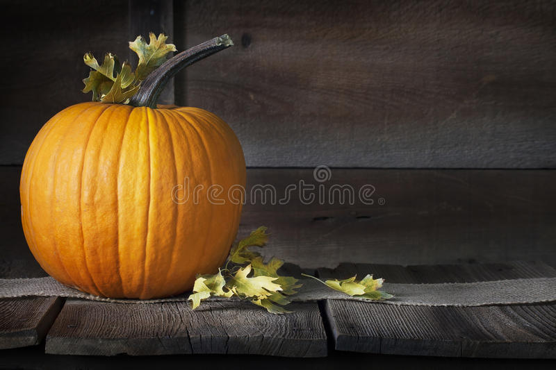 Pumpkin Fall Leaves. A pumpkin topped with coloring oak leaves sitting on burlap runner on rustic dark wood surface and background, a concept for autumn, fall