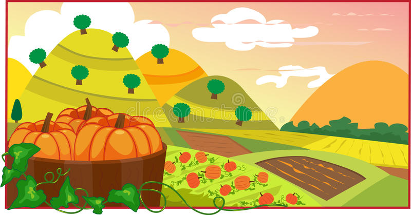 Download Pumpkin Field stock vector. Image of countryside, autumn - 33398223