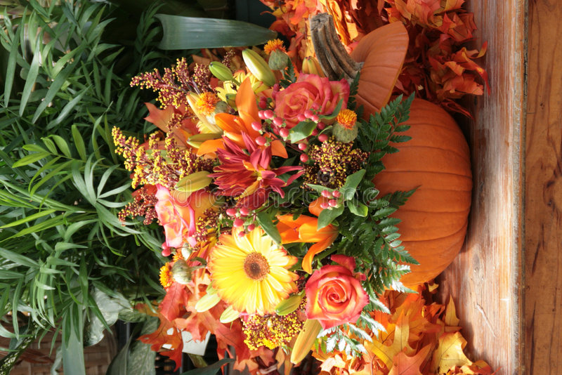 Download Pumpkin flora stock photo. Image of bouquet, september - 8008934