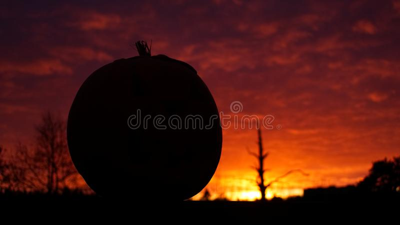 Pumpkin with Halloween bloodred background stock photo