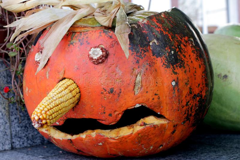 Pumpkin in the Halloween day stock images