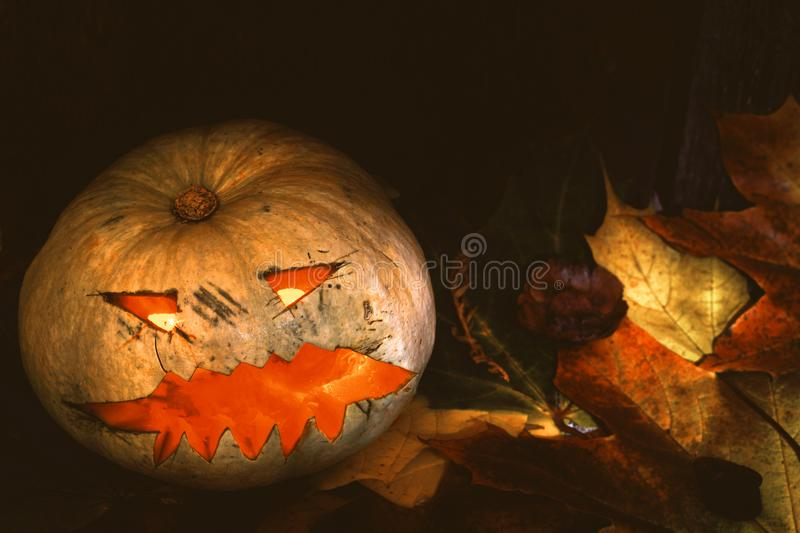 Pumpkin Halloween Jack-o-Lantern with autumn leaves next to a wooden background stock photography
