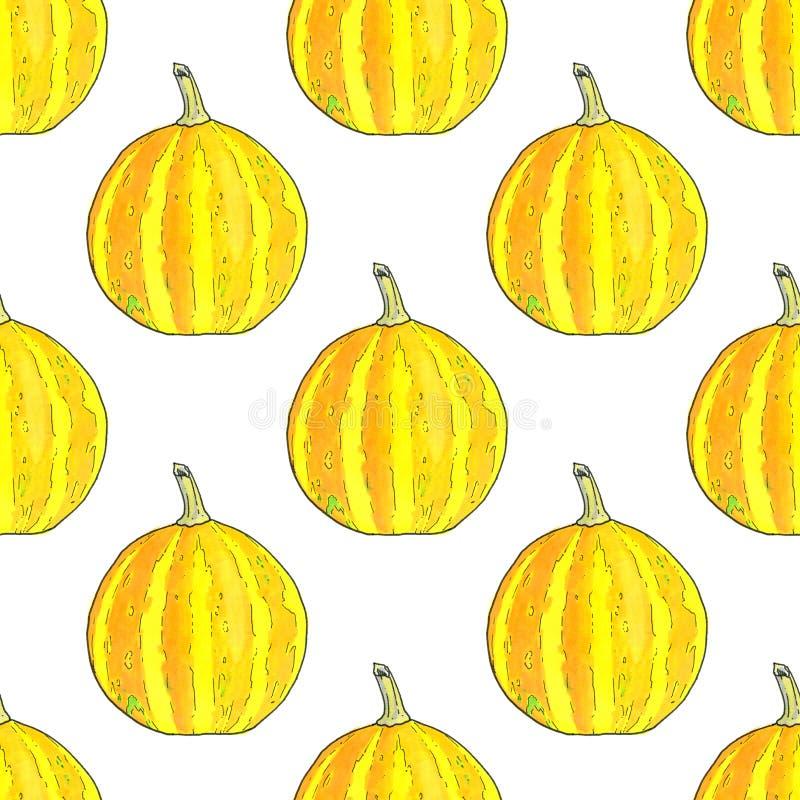 Pumpkin. Halloween and Thanksgiving day theme stock illustration