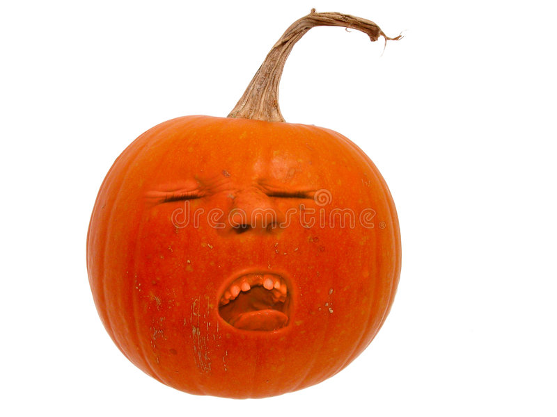 Pumpkin Head (2 of 2) royalty free stock images