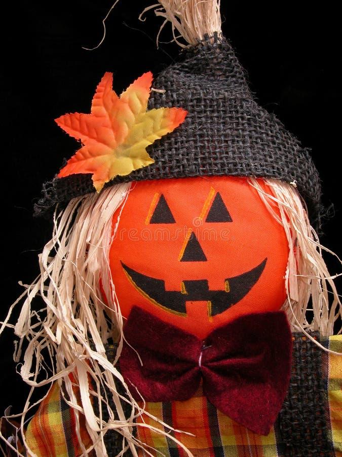 Pumpkin Headed Scarecrow on Black stock photo