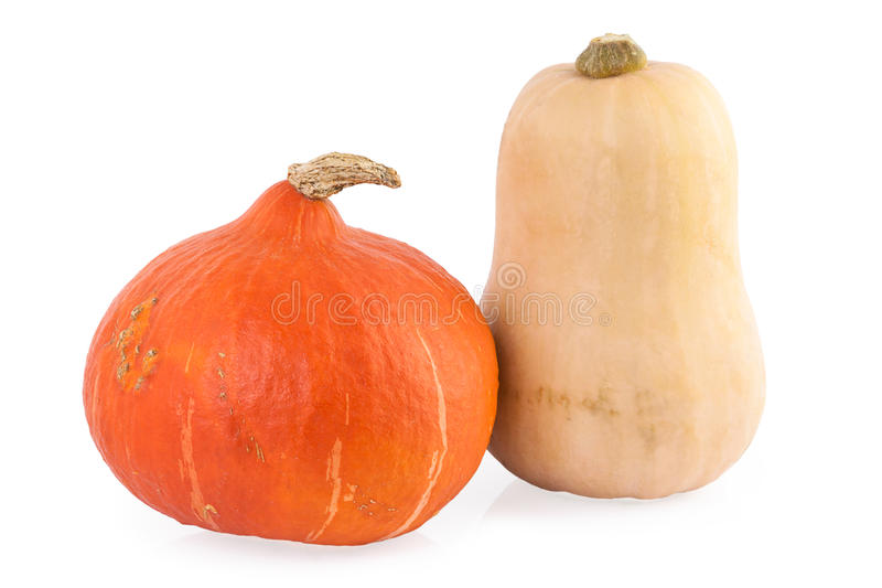 Pumpkin hokkaido and butternut royalty free stock image