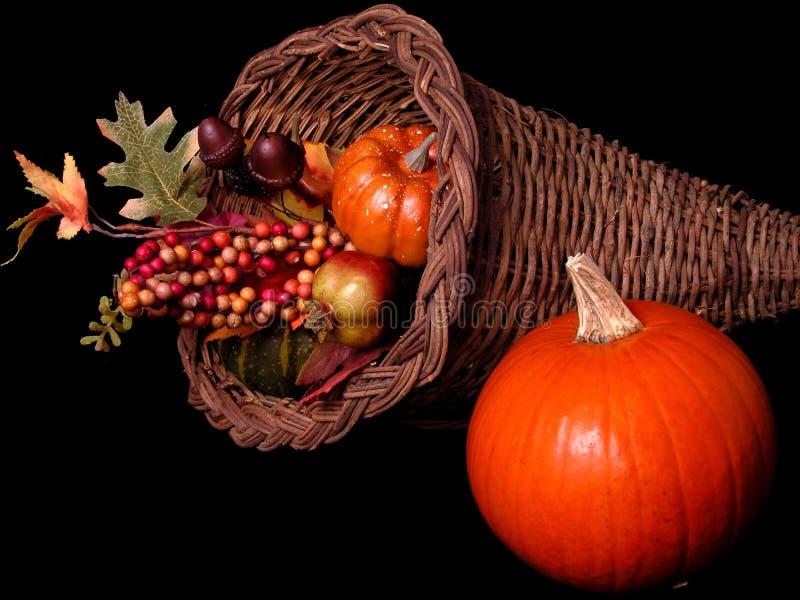 Pumpkin & Horn Basket Arrangement on Black royalty free stock image