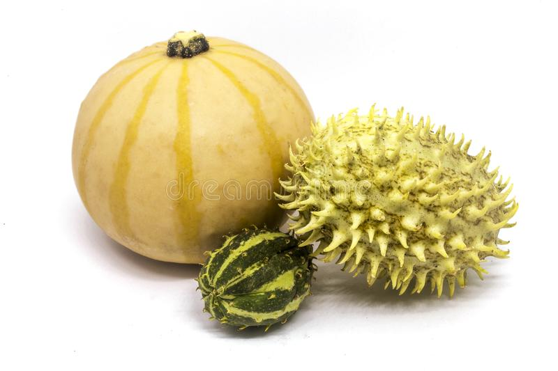 Pumpkin, horned melon vegetables stock photography