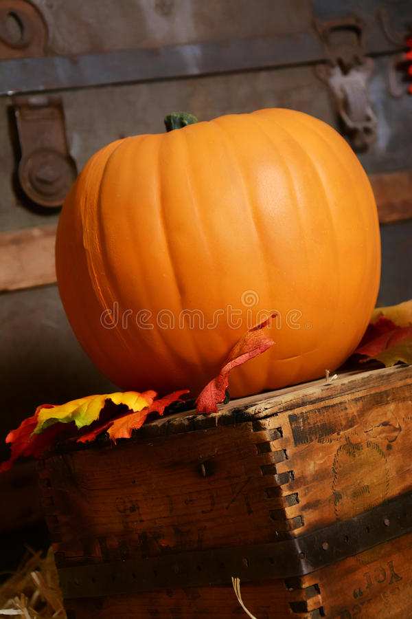 Free Pumpkin In Vintage Setting Royalty Free Stock Photo - 61617695