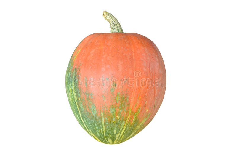 Pumpkin Isolated On White Royalty Free Stock Photos