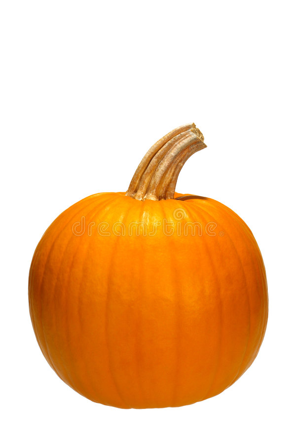 Pumpkin Isolated on White stock image