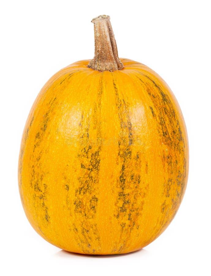 Download Pumpkin stock photo. Image of orange, natural, nature - 34455856