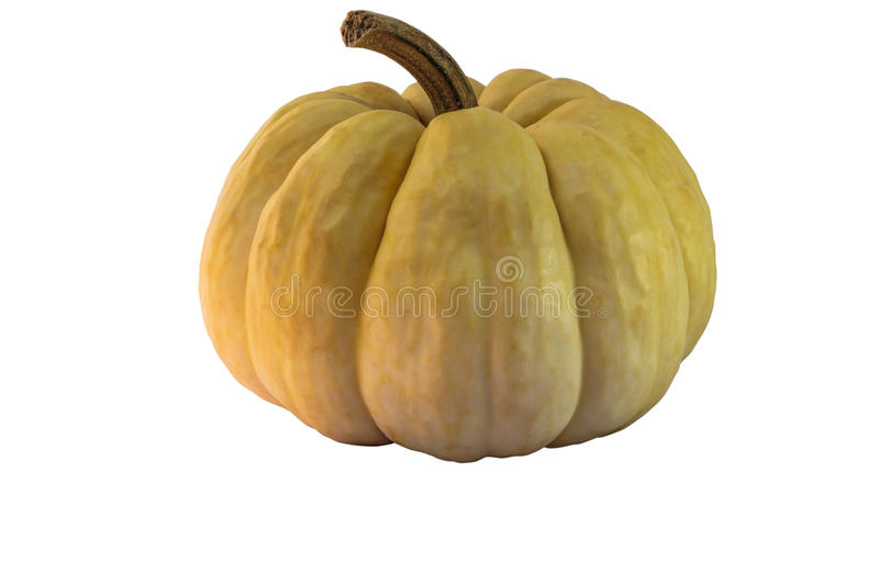Pumpkin isolated in white background with clippingpath. Stock photo royalty free stock image