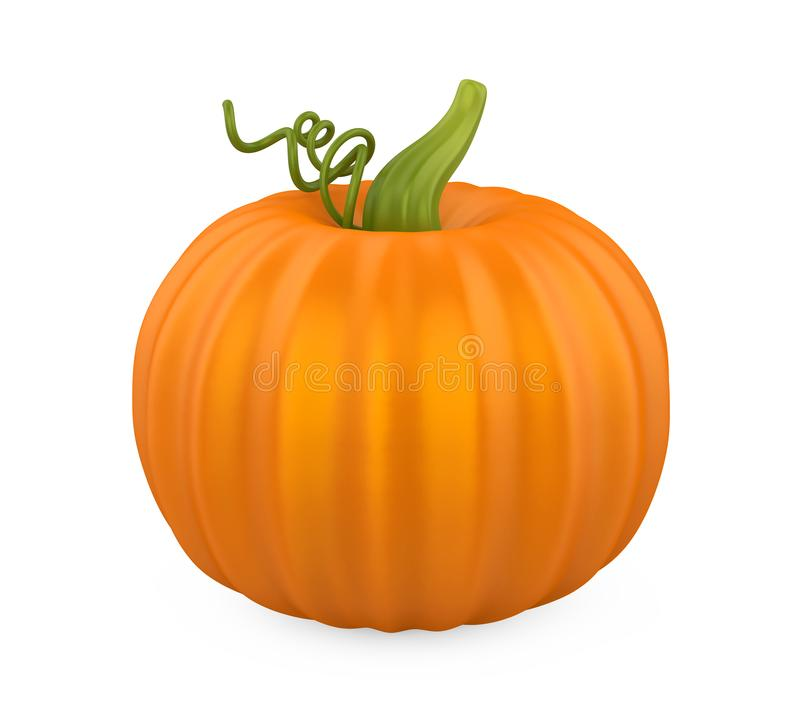 Pumpkin Isolated royalty free illustration
