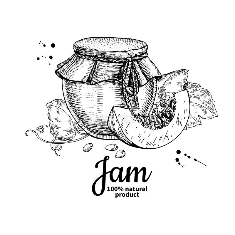 Pumpkin jam glass jar vector drawing. Jelly and marmalade. Hand. Drawn food illustration. Sketch style vintage objects for label, icon, packaging design royalty free illustration