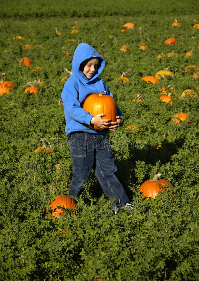 Free Pumpkin Kid Royalty Free Stock Images - 575229