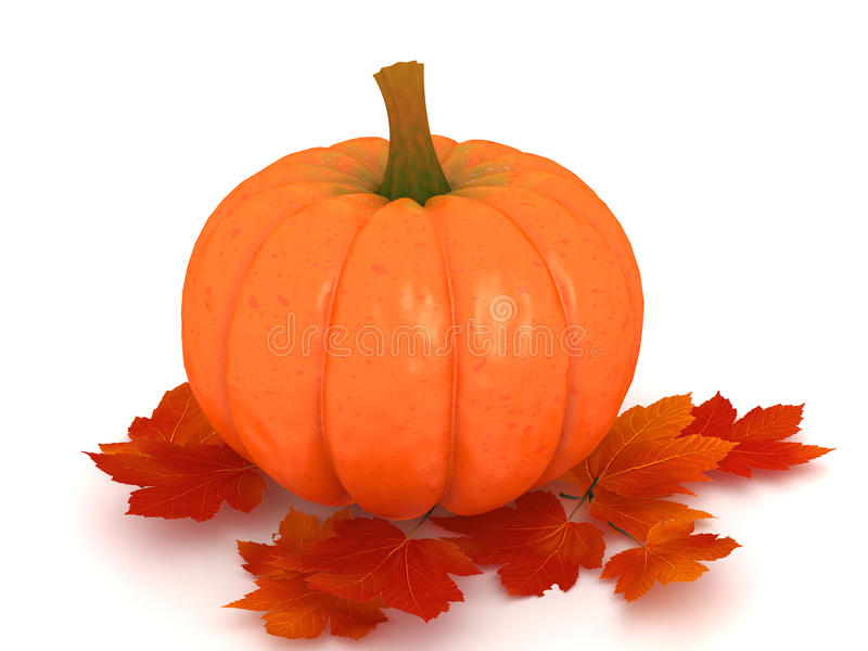 Download Pumpkin and leafs stock illustration. Image of white - 11015965