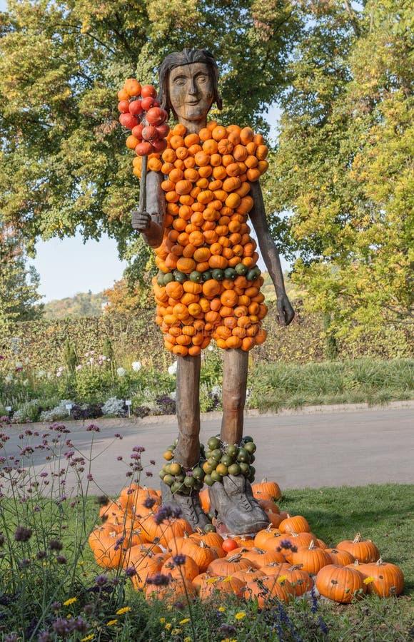 Pumpkin man royalty free stock images